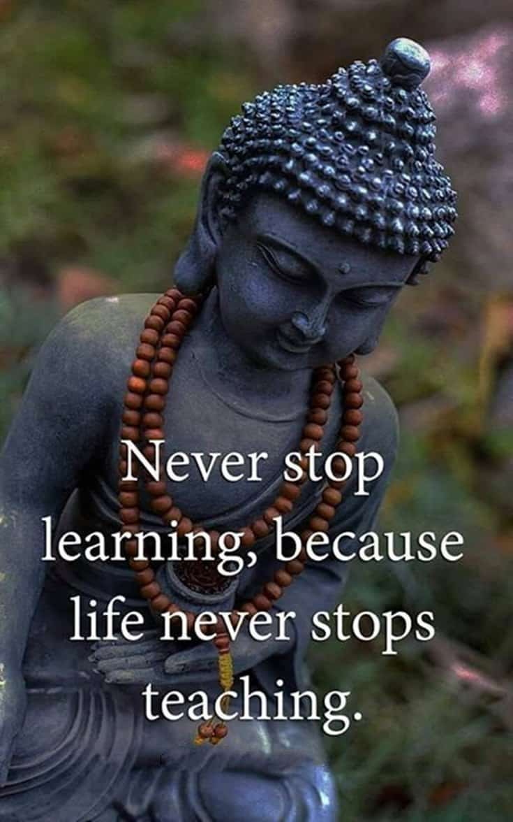 56 Buddha Quotes to Reignite Your Love 45