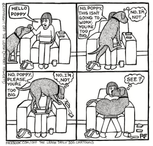 Poppy the Dog Cartoon