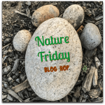 Nature Friday