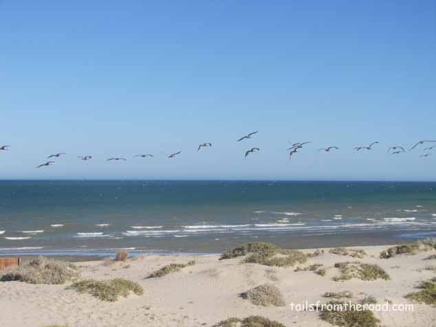 View from my Baja beach camp near San Felipe on the Sea of Cortez.
