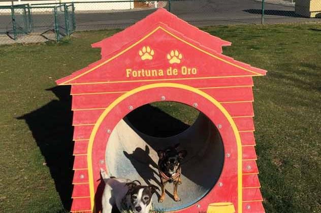 RV Park Review – Fortuna de Oro Resort – Yuma, AZ