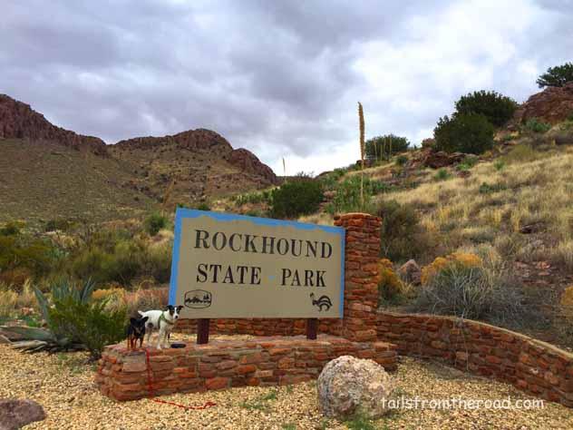 Rock hounds at Rock Hound