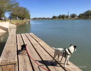 This was a large park in Carlsbad, NM. There was a dog park there and walking paths on this lake. Very nice!