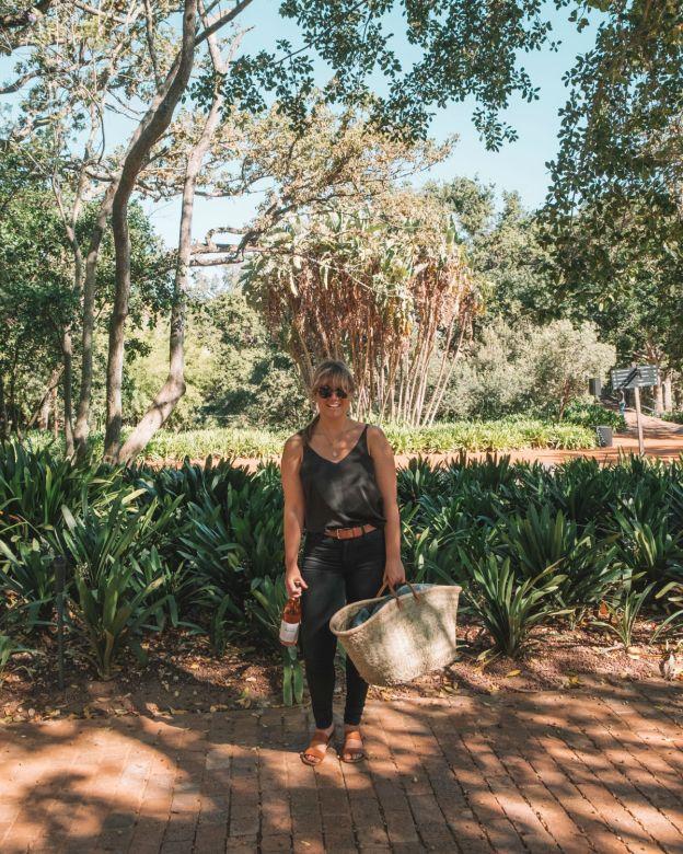 spier wine farm stellenbosch picnic