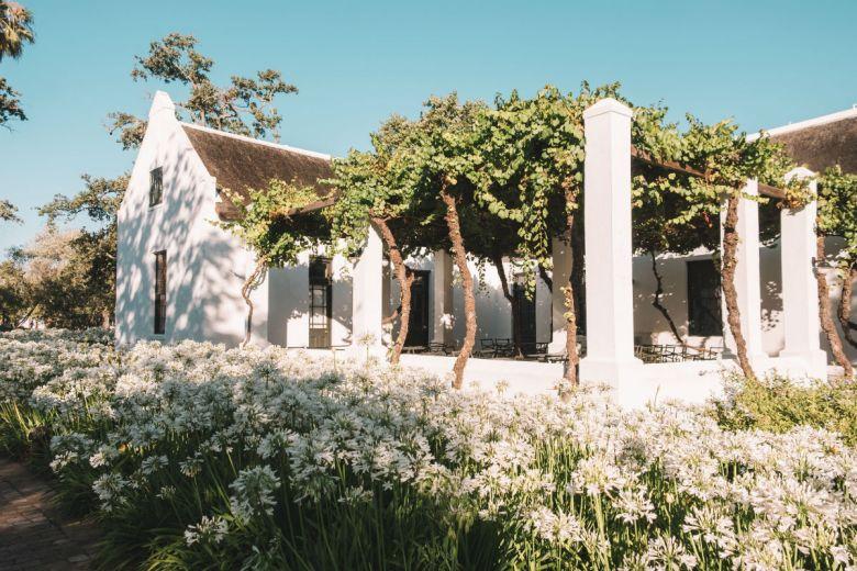 spier wine farm stellenbosch