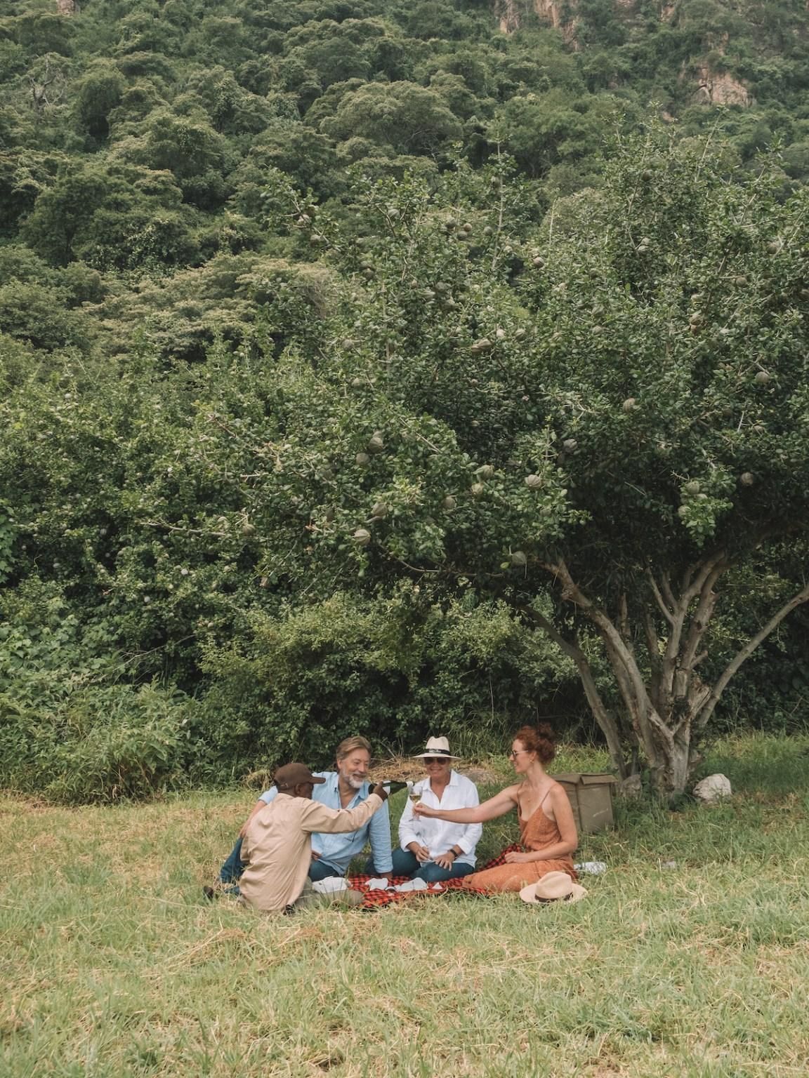 gibbs farm day trip lake manyara picnic
