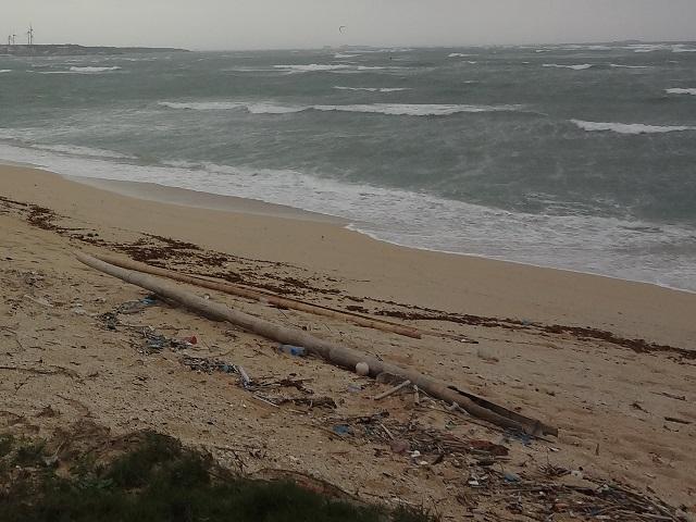 砂浜のゴミ
