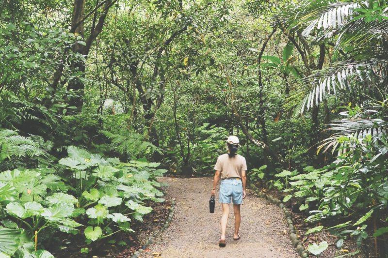 Fuyang Eco Park in Taipei.