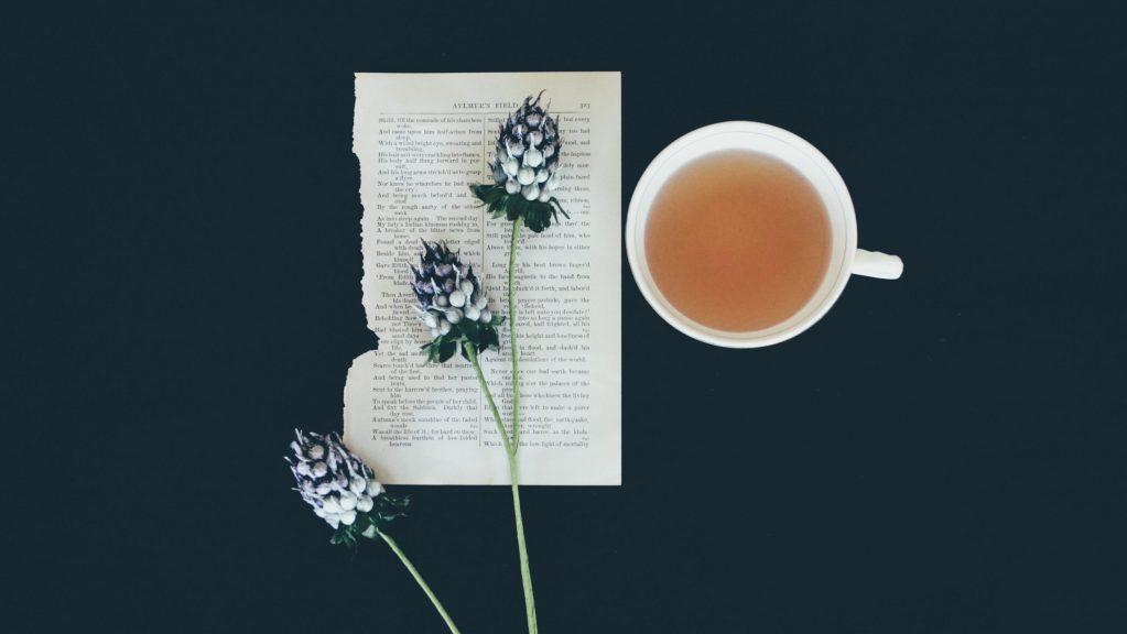 最天然的養生茶飲牛蒡茶減肥 牛蒡茶功效 買茶最推薦- 無可挑Tea