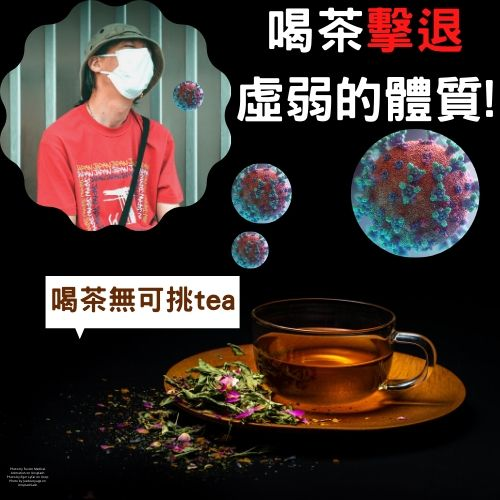 茶對抗病毒,茶出你的免疫力!這款『茶』抑制病毒生長 無可挑Tea