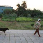 金門国家公園をカメラ片手に散策する