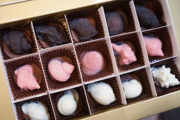2018 07 17 095801 - 澎湖巧克力│澎湖不倒翁貝殼巧克力就在中央老街