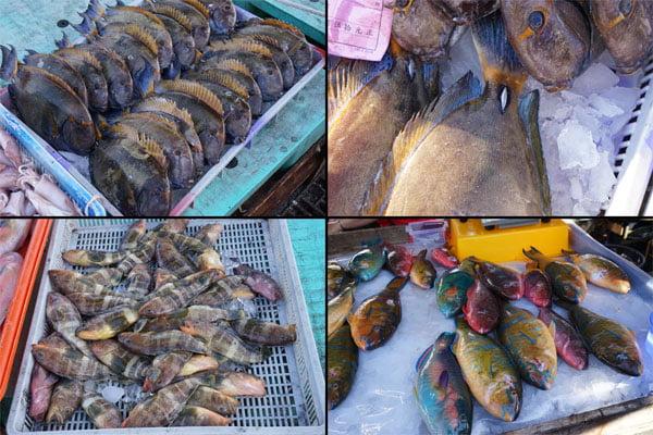 2018 07 17 172438 - 澎湖魚市場│早上6點過後很多海鮮都會沒了,想去要趁早,價格便宜人潮多