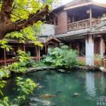 法國米其林綠色指南國際旅遊景點兩星推薦,台中鬧區裡的幽靜綠意中式簡餐茶館!