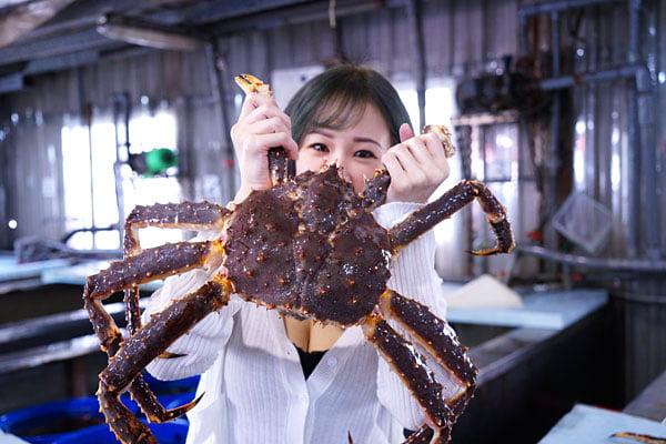 2019 10 08 011300 - 熱血採訪│帝王蟹價格大崩盤,台中屠龍老闆買下一整個水池的量!帝王套餐售完為止錯過等明年