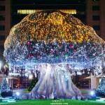 [ 2019新北市歡樂耶誕城 ]魔法耶誕夢幻場景 今晚一起來板橋耍浪漫 交通路線 燈區介紹