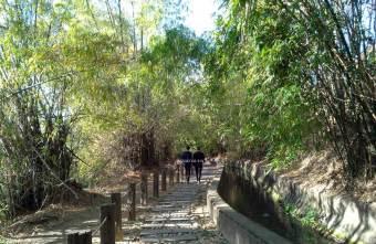 2021 01 20 074101 - 知高圳步道。台中熱門親子景點,輕鬆好走親子步道,好漢坡雪蓮登山步道