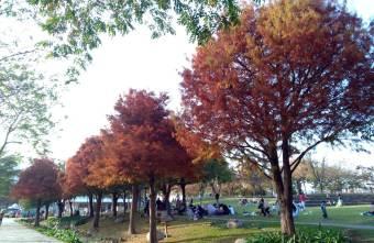 2021 01 28 073317 - 新都生態公園。北屯浪漫落羽松,綠地草皮景觀水池,台中親子免費景點