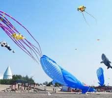 2021 10 20 231509 - 熱血採訪 | 沁藍風箏節,大型地景風箏天空飄揚,看衝浪賽體驗風箏彩繪,共邀大安微解風!
