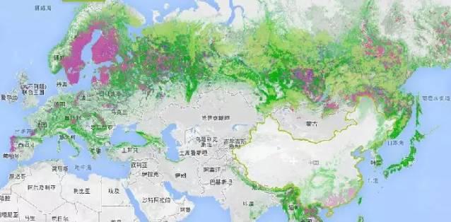 亞歐兩洲的森林覆蓋地圖