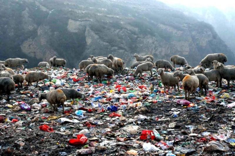 中國大陸土地環境破壞