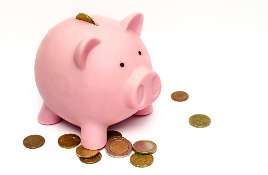 business money pink coins pig 1
