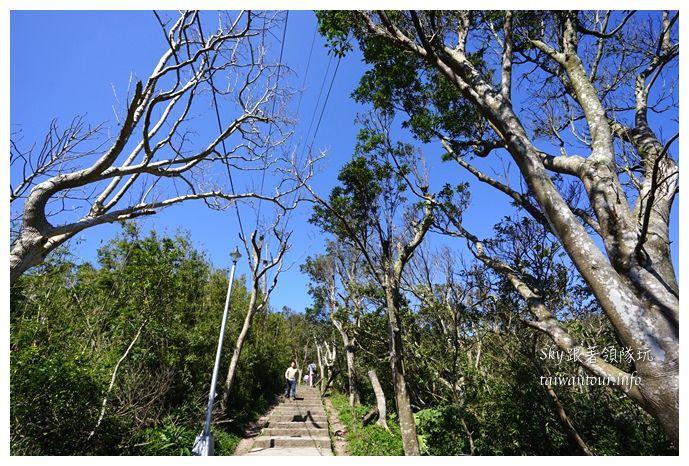 五股景點推薦觀音山硬漢嶺步道00489