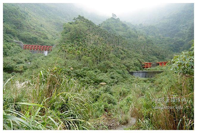古坑華山小天梯情人橋鋼管壩00670