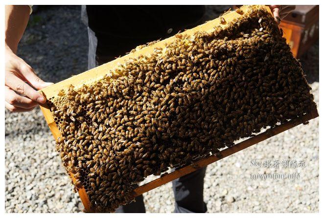 宜蘭景點養蜂人家02445