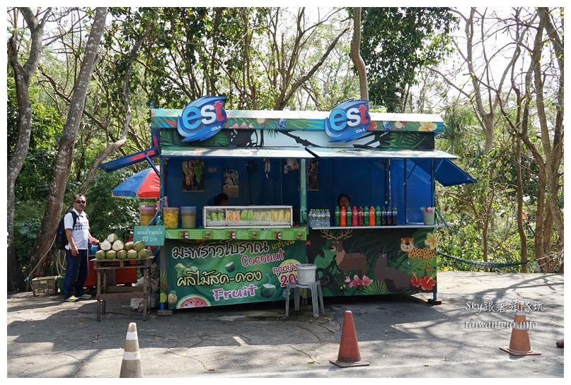泰國親子旅遊綠山動物園kheow kheow00145