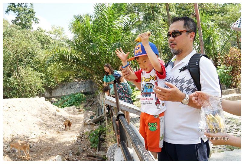泰國親子旅遊綠山動物園kheow kheow00171