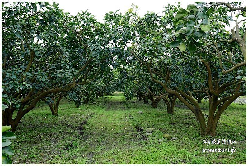 花蓮行程推薦養和屋活動柚遊自在柚來野餐趣DSC06294_结果