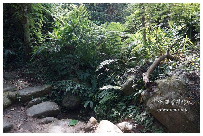 苗栗南庄景點蓬萊自然生態園區42湧泉八卦力05500