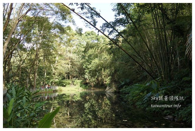 苗栗南庄景點蓬萊自然生態園區42湧泉八卦力05506