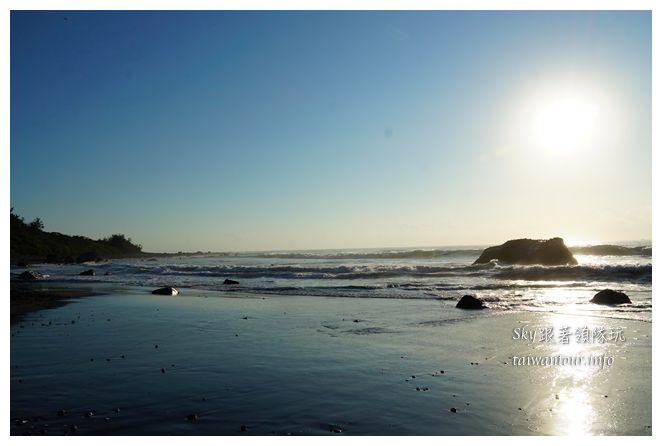 都歷木頭魚沙灘04631