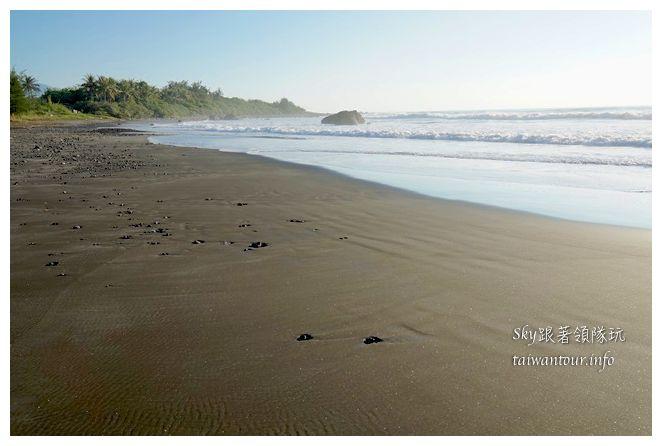都歷木頭魚沙灘04681
