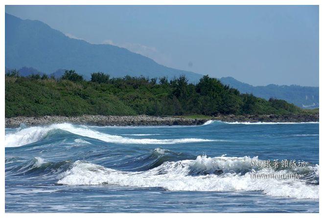都歷木頭魚沙灘04956