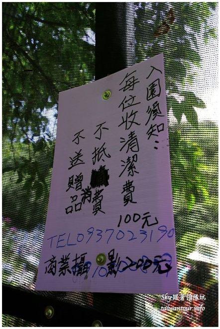 陽明山竹子湖繡球花DSC02868