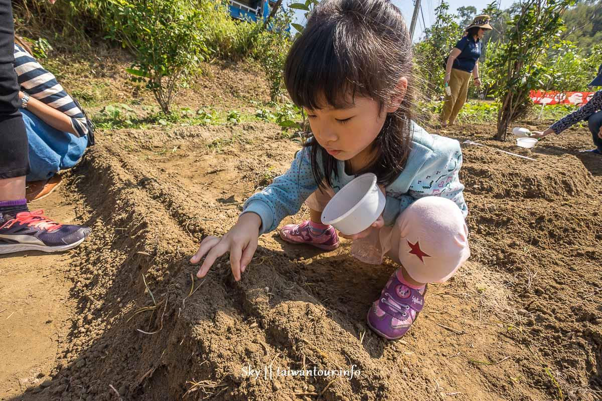 2018苗栗騰龍【食農體驗營】親子一日農夫.披薩DIY