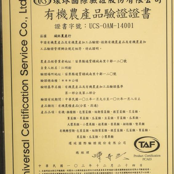 DSC05094