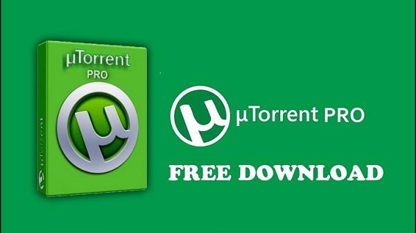 Torrent Pro Crack