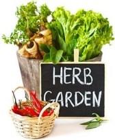 farmworld-img-herbs