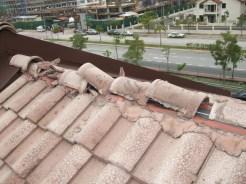 Bumbung Bocor 01