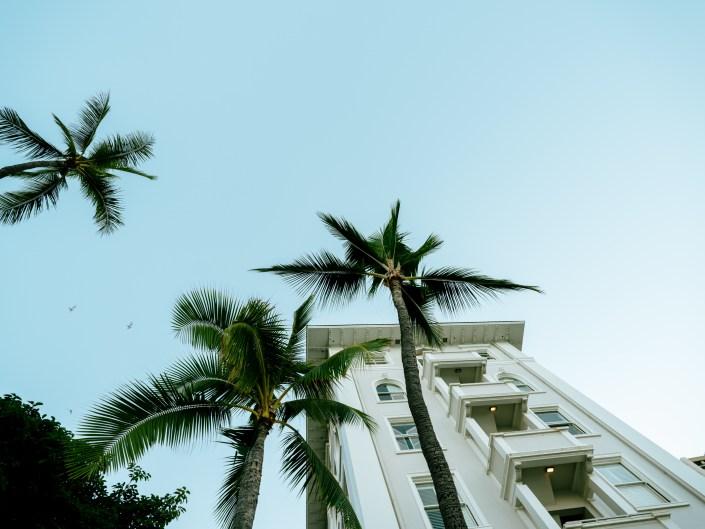 Waikiki 2017