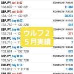 新FXツール収支報告05/31