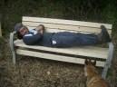 山梨で作ったベンチを羨ましそうに見るニッチ