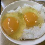 卵を食べるなら間違いなく、1928年創業の相模原の老舗有名ブランド有精卵「さがみっこ」が美味い!