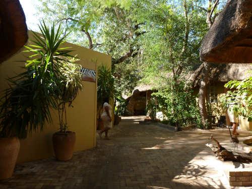 カサネのチョベサファリロッジ(kasane,chobe safari lodge) (21)