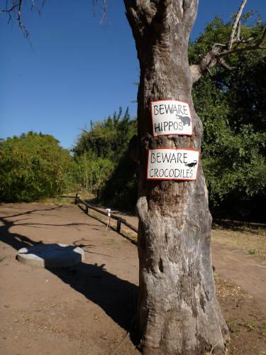 カサネのチョベサファリロッジ(kasane,chobe safari lodge) (24)