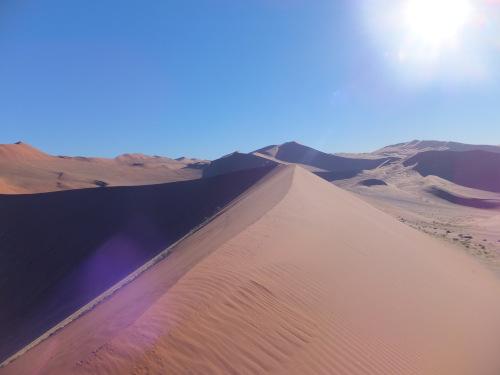ナミビアナミブ砂漠1 (5)